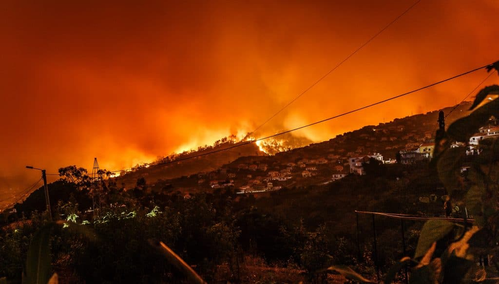 Wildfire disaster. Picture of a hillside ablaze, with homes in the foreground. Photo by Michael Held on Unsplash